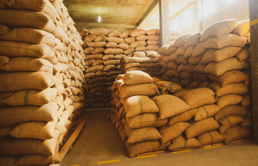 Clarifying the role of the coffee importer