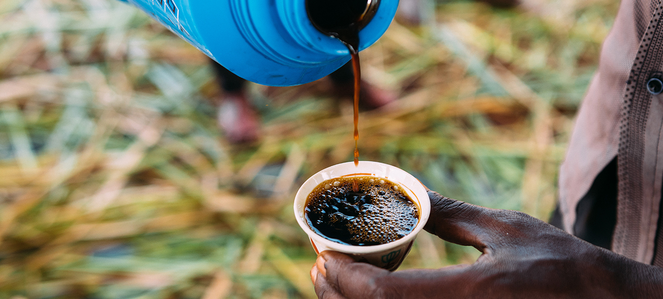 How You Become A Successful Green Coffee Buyer